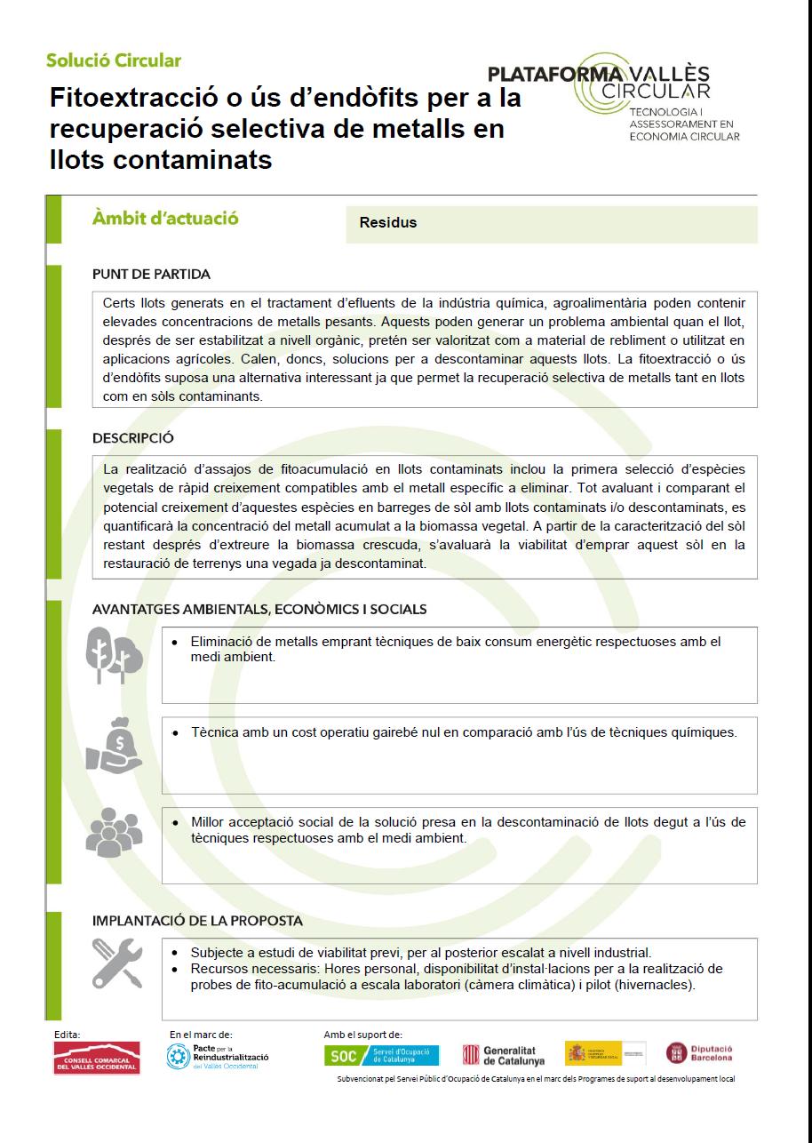 Fitoextracció o ús d'endòfits per a la recuperació selectiva de metalls en llots contaminats,