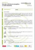 Estudis d'eficiència energètica a nivell industrial